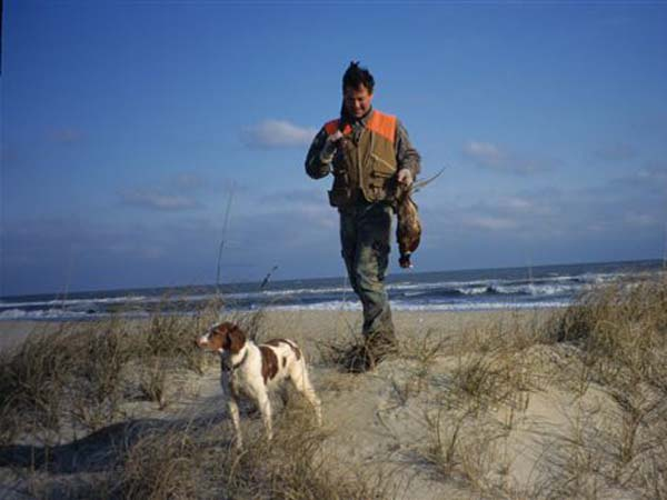 Outer Banks Pheasant Hunter