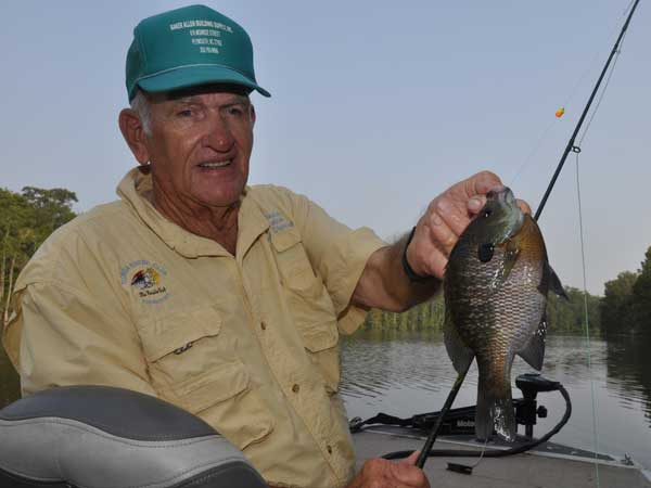 Bob Smithwick with a bluegill caught on a fly in a creek within the Roanoke River system, near Windsor.
