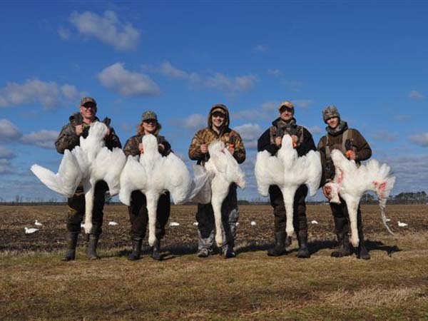 Mike Marsh, Carol Marsh, Justin Marsh, Richard Manuel and Robert Manuel with tundra swans taken during a hunt in Northeastern N.C. with Culley Wilson of Wild Wing Adventures.